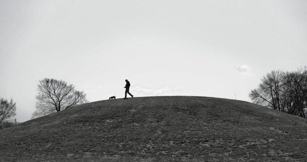 Eye Level Indian Mound