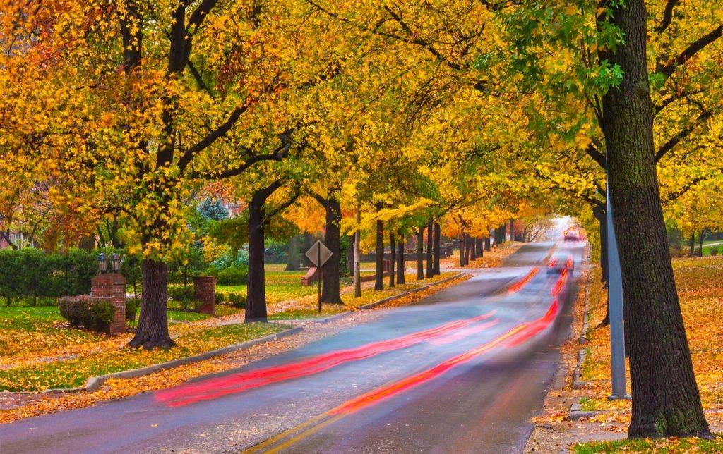 Fall-scene-KCMO-fa-1024x644