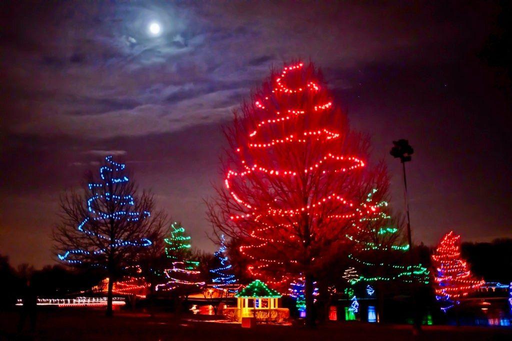 Sar_Ko_Par-Park-Xmas-trees-and-moon-December-2013-fa-1024x683