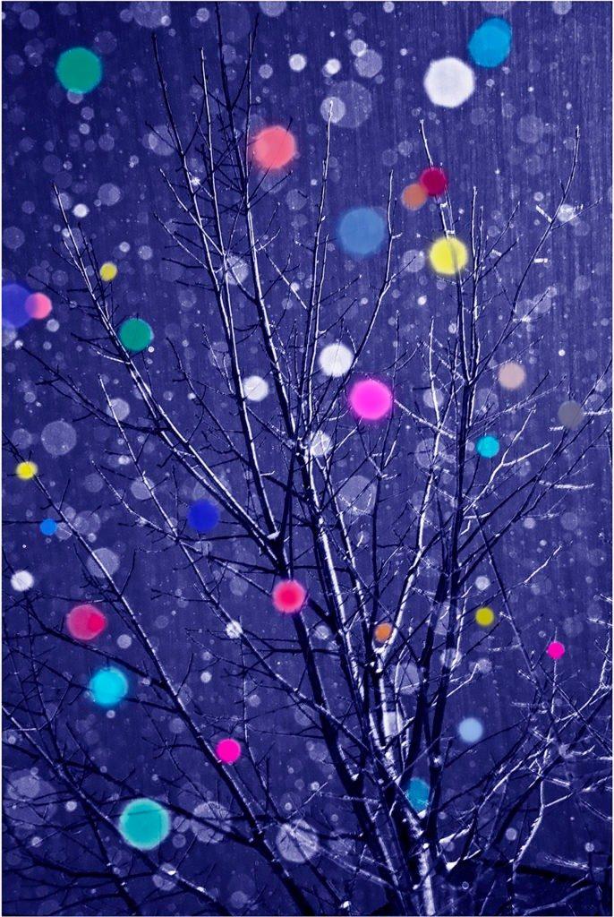 Snow-Tree-color-blue-022113-fa-686x1024